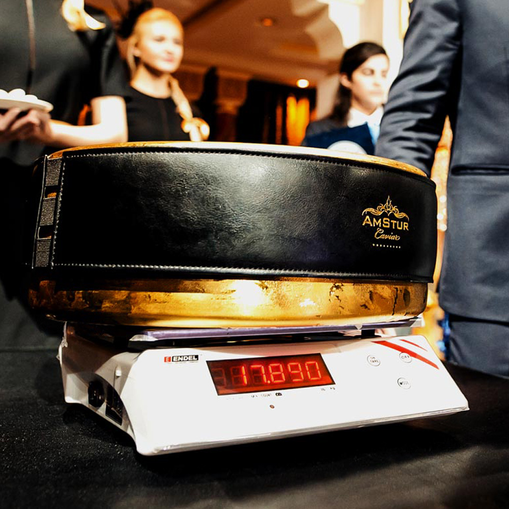 World's Largest Caviar Tin